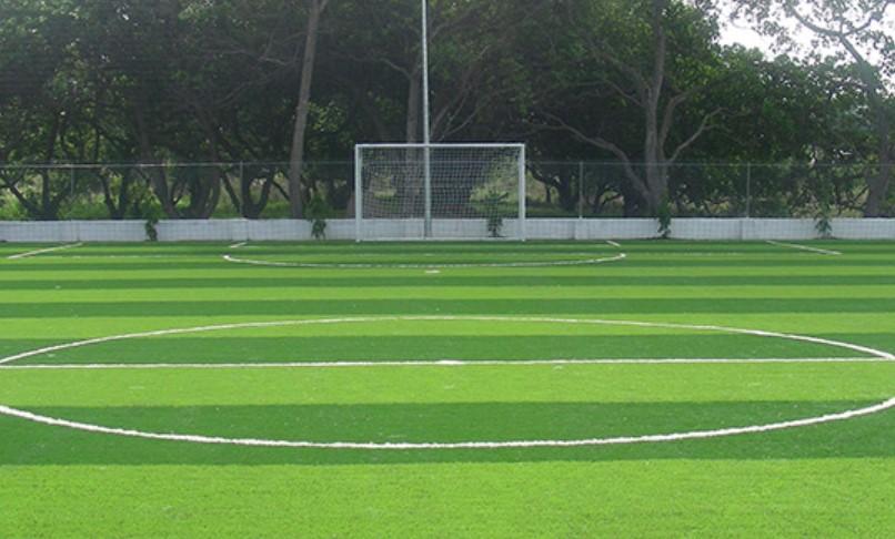 Sân bóng đá mini hn khu vực quận Hoàng Mai